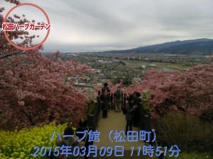 2015-03-09_11.51.11_STAMP